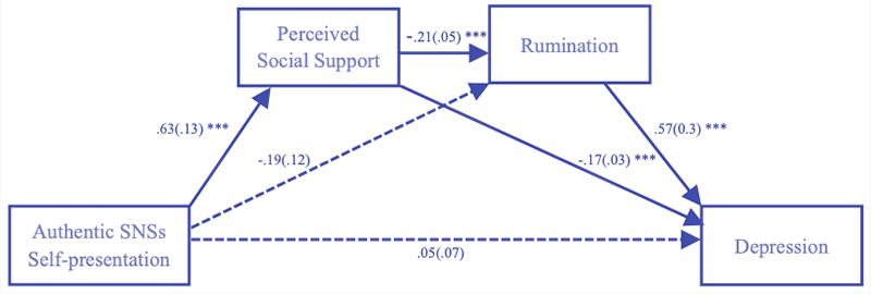 Embrace Autism | Authenticity & avoiding rejection | diagram AuthenticSelfSocialNetworks