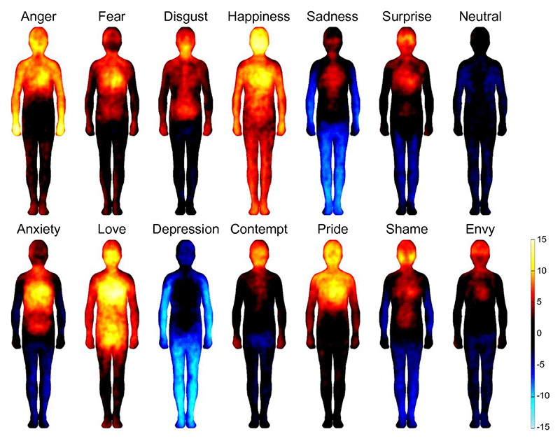 Embrace ASD | Mini-lecture: alexithymia | diagram BodilyEmotions