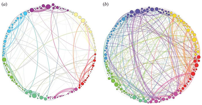 Embrace Autism | Synaptic growth, synesthesia & savant abilities | diagram psilocybinbrain
